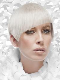 Young Fashion Platinum Blonde Sharp Scissors Short Straight Lace Front Wigs